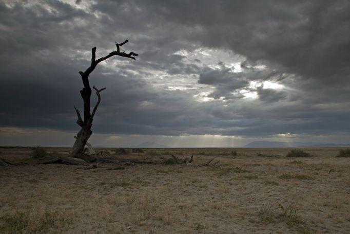 Кения природа 3