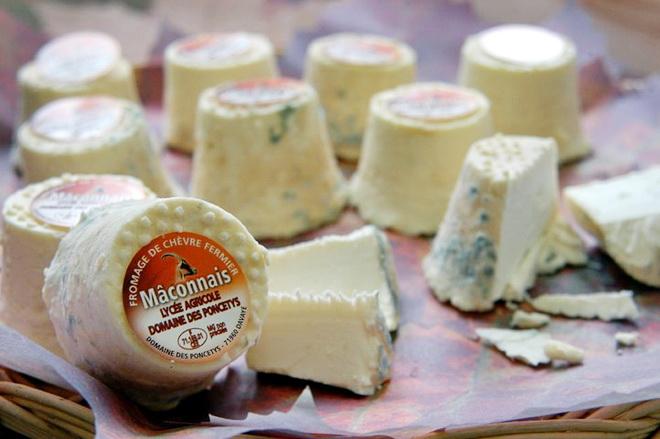сырный вкус - кулинарные вкусы