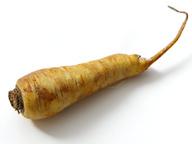 Петрушка (корень)