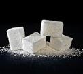 В Бобруйске будет построен сахарный завод