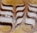 Видео дня: Рисунок зебра на кофе (Zebra Alfredo)