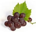 Вредное воздействие жиров на организм нейтрализует красное вино