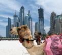 Отдых в Дубае: «Фалафель», «Мачбус», «Самман» и... фонтаны