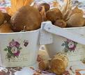 Осеннее застолье: суп с грибами и фаршированный боровиками карп!