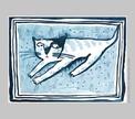 Еда, коты и другие картины шеф-реда TAXI Сергея Стельмашонка
