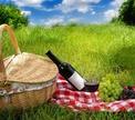 Колонка автора: «На пикник!»