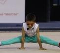 «Кубок Маугли – 2014» – битва маленьких гимнастов