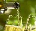 Тонкости профессии: как дегустируют вина