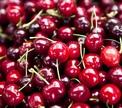 Вишня – ягода не для всех?