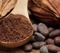 Все о какао