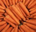 Как хранить морковь?