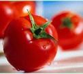 Ученые вырастили помидоры, которые защищают от рака