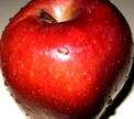 Молодильные яблоки существуют!