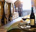 Италия: искусcтво создавать вина или путевые заметки влюбленной туристки!!!