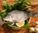 Рыбное меню: законы тепловой обработки