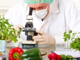 Наука и кулинария