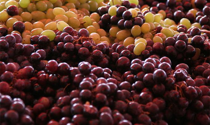 Фестиваль вина «Бычья кровь» в Венгрии